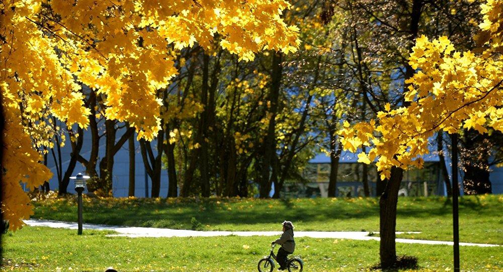 Гидромет: погода в Беларуси поменяется, с 15 сентября - заморозки