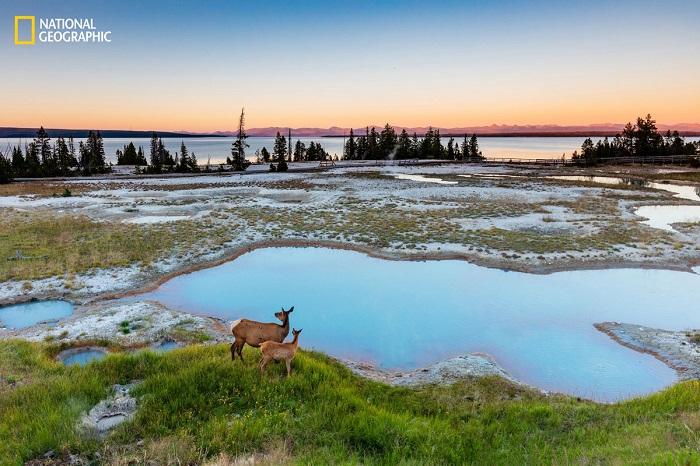 National Geographic определили лучшие фотографии года