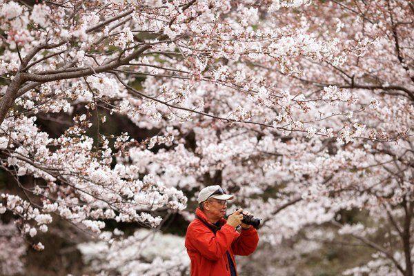 """В Японии ввели понятие """"оскорбление запахом"""""""