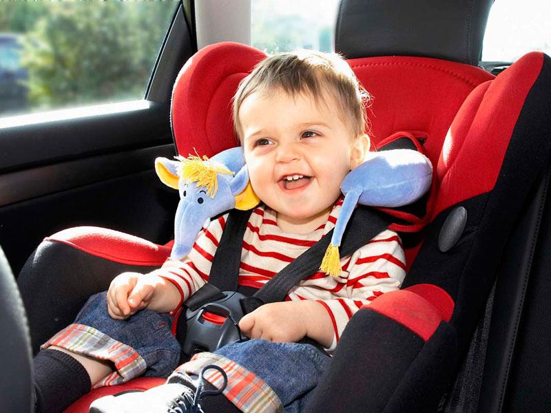 Сегодня стартовала областная акция «Ребенок — главный пассажир»