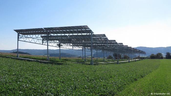 В Германии тестируют смесь сельского хозяйства и солнечной энергетики