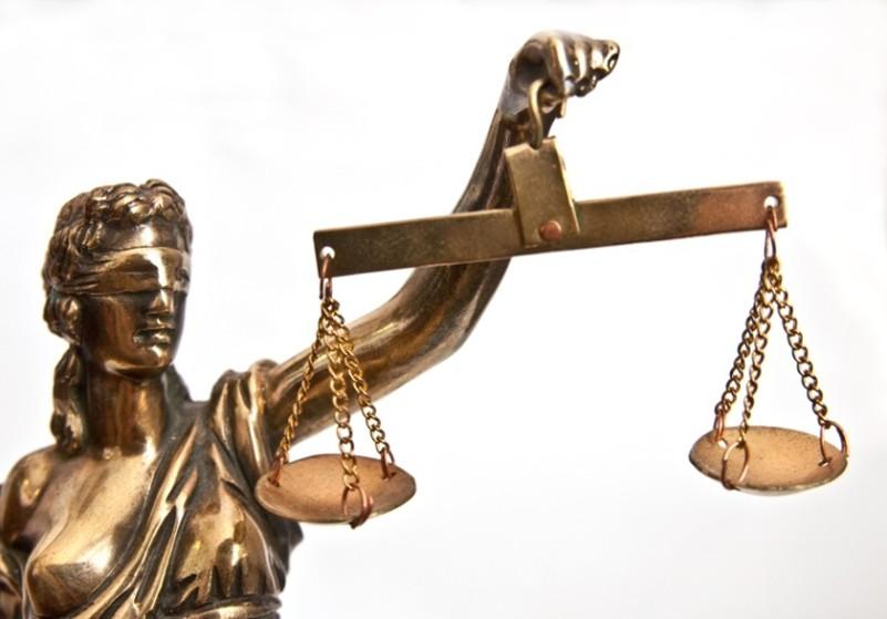 За незаконную разделку погибшего в ДТП лося осуждены три жителя Березовского района