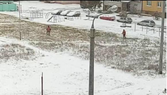 «Я всякое видел, но чтобы траву под снегом косили...»: в Логойске сняли забавное видео