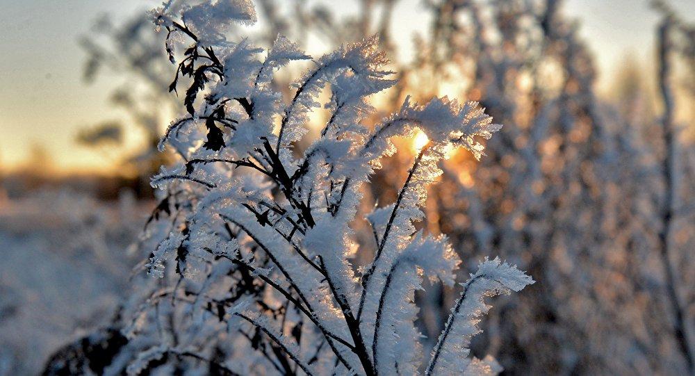Гидромет о погоде на выходных: днем – снег, ночью – мороз