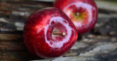 Это надо знать: 5 фактов о яблоках