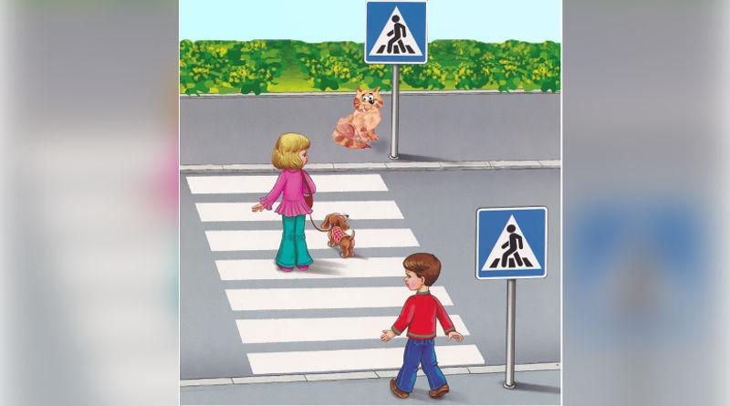 «Сделаем лето безопасным вместе!» − 25 мая пройдет Единый день безопасности дорожного движения