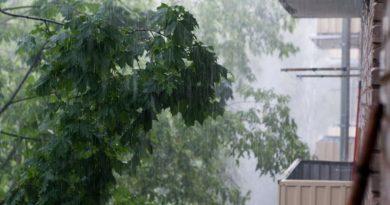 Синоптики: дожди ввыходные пройдут почти по всей Беларуси