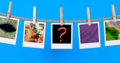 ТЕСТ: Лавандовое поле или ковёр? Угадайте, что изображено на фото