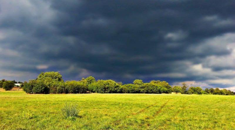 Сначала грозы, потом похолодание: прогноз погоды вБеларуси на выходные