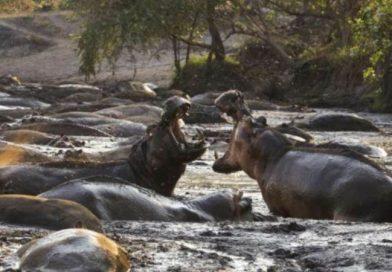 National Geographic покажет мировую премьеру сериала «Враждебная планета»