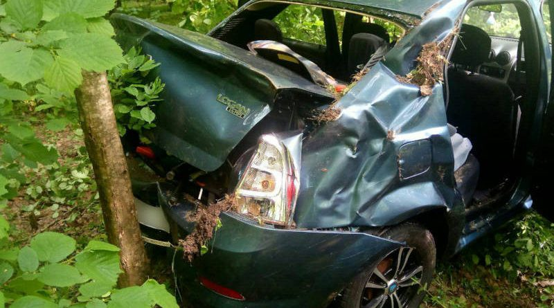 В Речицком районе водитель автомобиля пытался уйти от столкновения сдеревом. Пострадал пассажир