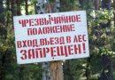 В Речицком районе введен запрет на посещение леса