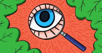 ТЕСТ: Насколько вы наблюдательны?