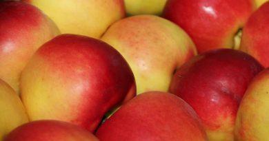 Что происходит сорганизмом, когда вы едите яблоки?