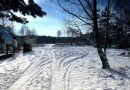 Предварительный прогноз: зимой будет очень много снега